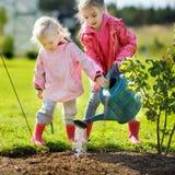 Deux petites filles aidant dans un jardin Image libre de droits