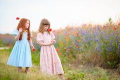 Deux petites filles avec les fleurs sauvages communiquent entre eux à Photographie stock