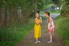 Deux petites filles ayant l'amusement discutant la position dans un parc heureux Photographie stock