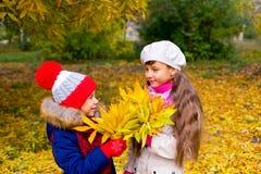 Deux petites filles en parc d'automne avec des feuilles Image stock