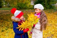 Deux petites filles en parc d'automne avec des feuilles Photographie stock