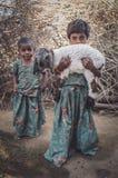 Deux petites filles et agneaux Image stock