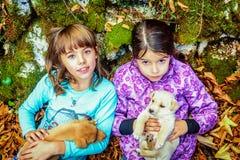 Deux petites filles jouant avec des chiots dans les bois Photographie stock