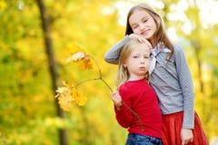 Deux petites filles mignonnes ayant l'amusement le beau jour d'automne Enfants heureux jouant en parc d'automne Enfants recueilla Photos libres de droits
