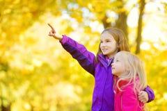 Deux petites filles mignonnes ayant l'amusement le beau jour d'automne Enfants heureux jouant en parc d'automne Enfants recueilla Photographie stock libre de droits