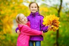 Deux petites filles mignonnes ayant l'amusement le beau jour d'automne Enfants heureux jouant en parc d'automne Enfants recueilla Photo stock