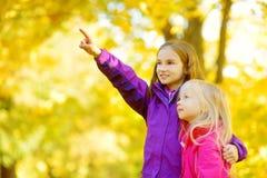 Deux petites filles mignonnes ayant l'amusement le beau jour d'automne Enfants heureux jouant en parc d'automne Enfants recueilla Image stock