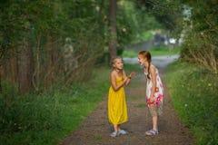 Deux petites filles parlant avec émotion en parc Marche Image libre de droits
