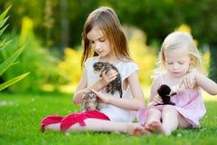 Deux petites soeurs alimentant des chatons avec du lait Photo stock