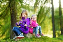 Deux petites soeurs drôles ayant l'amusement pendant la hausse de forêt le beau jour d'automne dans les Alpes italiens Photographie stock