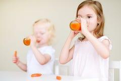 Deux petites soeurs mignonnes buvant du jus de carotte Photo libre de droits