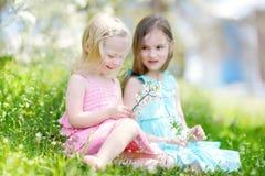 Deux petites soeurs mignonnes dans le jardin de floraison de cerise Photos libres de droits