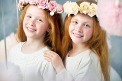 Deux petites soeurs rousses ensemble photographie stock libre de droits