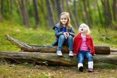 Deux petites soeurs s'asseyant sur un grand rondin image stock