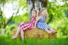 Deux petites soeurs s'asseyant sur une meule de foin dans le pommier font du jardinage Photos stock