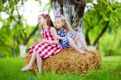Deux petites soeurs s'asseyant sur une meule de foin dans le pommier font du jardinage Photographie stock libre de droits