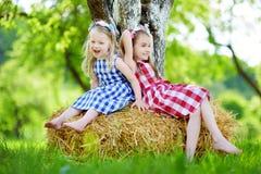 Deux petites soeurs s'asseyant sur une meule de foin dans le pommier font du jardinage Images libres de droits