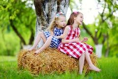 Deux petites soeurs s'asseyant sur une meule de foin dans le pommier font du jardinage Image libre de droits