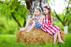 Deux petites soeurs s'asseyant sur une meule de foin dans le pommier font du jardinage Photo stock