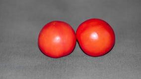 Deux petites tomates rouges réglées contre un contexte de mi tissu gris photo libre de droits