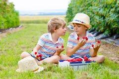 Deux petits amis, garçons d'enfant ayant l'amusement à la ferme de framboise Photographie stock libre de droits