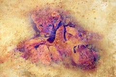 Deux petits animaux de lion mignons jouant ensemble, effet graphique Photographie stock