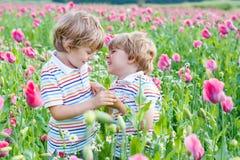 Deux petits enfants blonds heureux dans le domaine de floraison de pavot Photographie stock libre de droits