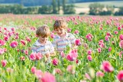 Deux petits enfants blonds heureux dans le domaine de floraison de pavot Photos stock