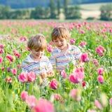 Deux petits enfants blonds heureux dans le domaine de floraison de pavot Photos libres de droits