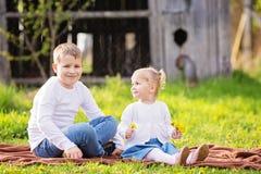 Deux petits enfants caucasiens mignons, garçon et fille, s'asseyant dans une herbe Photographie stock libre de droits