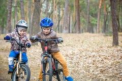 Deux petits enfants de mêmes parents ayant l'amusement sur des vélos dans l'avant d'automne ou de printemps Photographie stock libre de droits