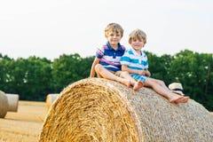 Deux petits enfants et amis avec la pile ou la balle de foin Photos libres de droits