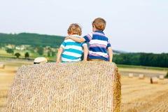 Deux petits enfants et amis avec la pile ou la balle de foin Image stock