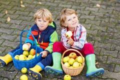 Deux petits enfants jumeaux adorables mangeant des pommes dans le jardin de la maison, OU Image libre de droits