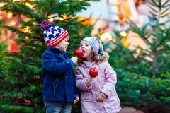 Deux petits enfants mangeant la pomme crystalized sur le marché de Noël Images stock