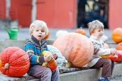 Deux petits enfants s'asseyant avec un bon nombre de potirons sur la ferme de correction Photographie stock libre de droits