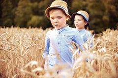 Deux petits frères marchant parmi la céréale Images libres de droits