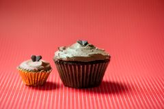 Deux petits gâteaux faits maison de chocolat avec de la crème foncée de chocolat Photos stock