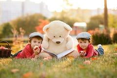 Deux petits garçons adorables avec son ami d'ours de nounours en parc Photos libres de droits