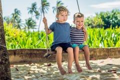 Deux petits garçons blonds ayant l'amusement sur l'oscillation sur le s tropical Photos stock