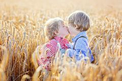 Deux petits garçons d'enfant de mêmes parents ayant l'amusement et étreignant sur le blé jaune Images stock
