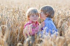 Deux petits garçons d'enfant de mêmes parents ayant l'amusement et parlant du blé jaune Photos stock