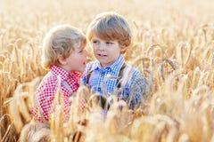 Deux petits garçons d'enfant de mêmes parents ayant l'amusement et parlant du blé jaune Images libres de droits