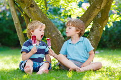 Deux petits garçons d'enfant de mêmes parents mangeant la crème glacée rouge dans le jardin de la maison Photographie stock