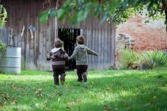 Deux petits garçons dans un jardin de pomme Images stock