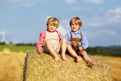Deux petits garçons et amis d'enfant de mêmes parents s'asseyant sur la pile de foin Images libres de droits