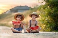 Deux petits garçons mignons, mangeant la pastèque sur un chemin de village rural Image stock