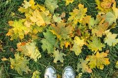Deux pieds faisant un pas sur les feuilles sèches Image libre de droits