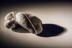 Deux pierres sur le fond d'ombre Photos stock