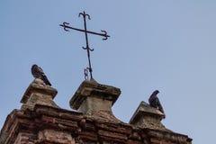 Deux pigeons étaient perché sur une chapelle au parc de pigeon images libres de droits
